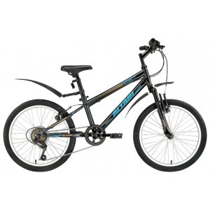 Аltair MTB HT Junior (20)